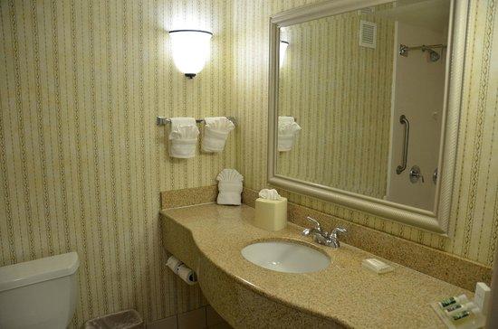 Hilton Garden Inn: Badkamer