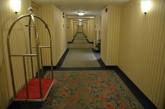 Hilton Garden Inn: Gang