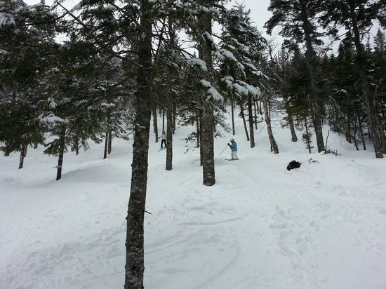 Sugarloaf Mountain Hotel: Brackett Basin Glade is steep and deep with powdah!