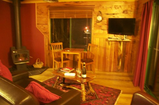 the main living area with cosy fire