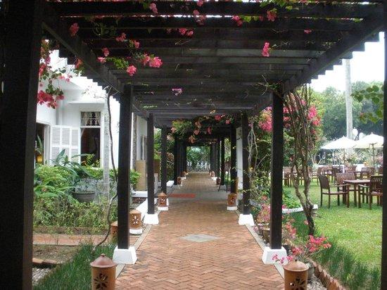 Maison Souvannaphoum Hotel : gardens
