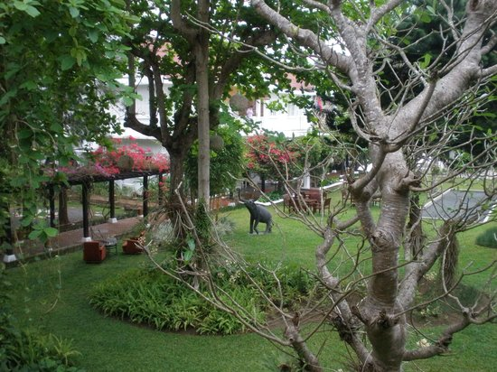 Maison Souvannaphoum Hotel: gardens