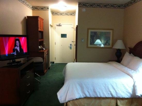 Hilton Garden Inn Houston / Bush Intercontinental Airport: room 120