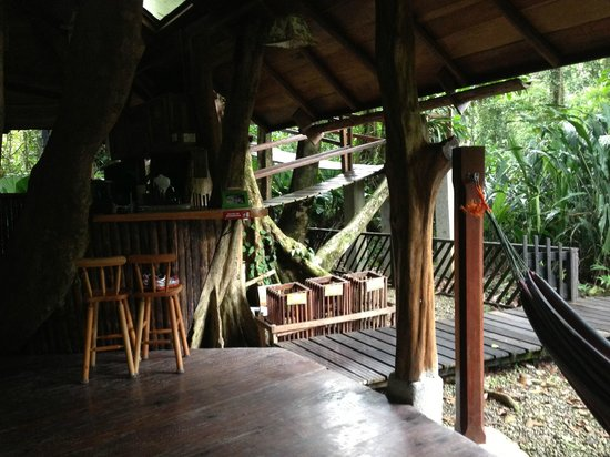 Tree House Lodge: Ground floor