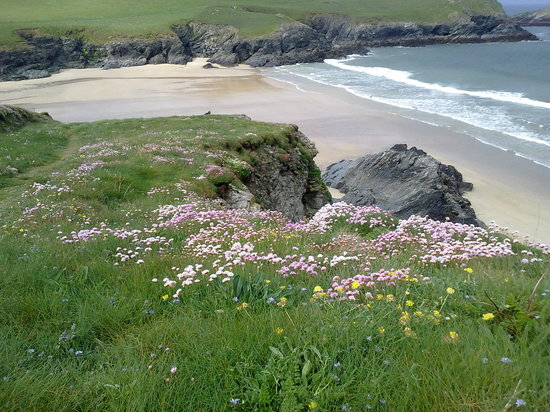 Myrtle Cottage: A favourite of the locals Porth Joke Beach