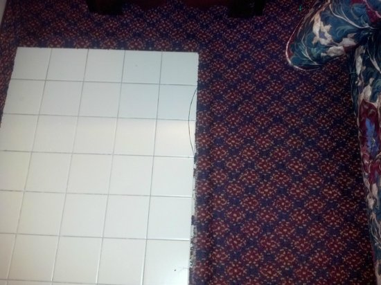 Biltmore Suites Hotel: crack in tile