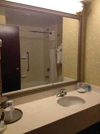 Hampton Inn Conyers: bathroom pic 2