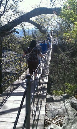 Lookout Mountain, GA: The bridge (I didn't make it across at age 12, but I did at 32).