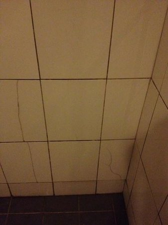 City Central Youth Hostel: cracked bathroom tiles