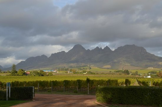 Jonkershoek Nature Reserve: View of Simonsberg