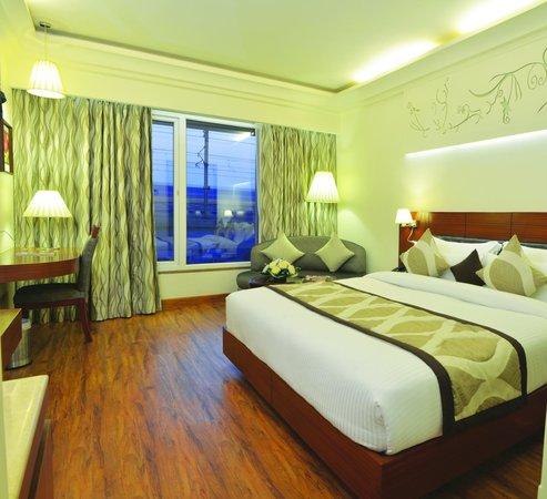 Hotel Regent Grand : Metro View Room