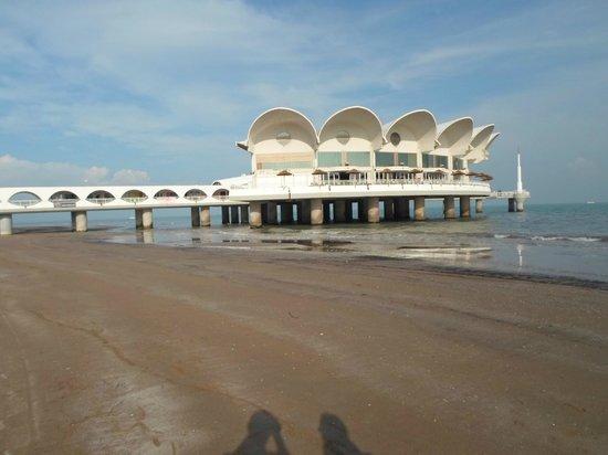 Arrivando dalla spiaggia a Terrazza Mare - Foto di Terrazza a Mare ...