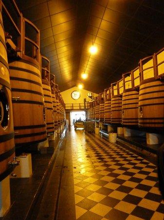 Château Pape Clément : El interior donde está las cuvas y se realiza la elaboración de los vinos