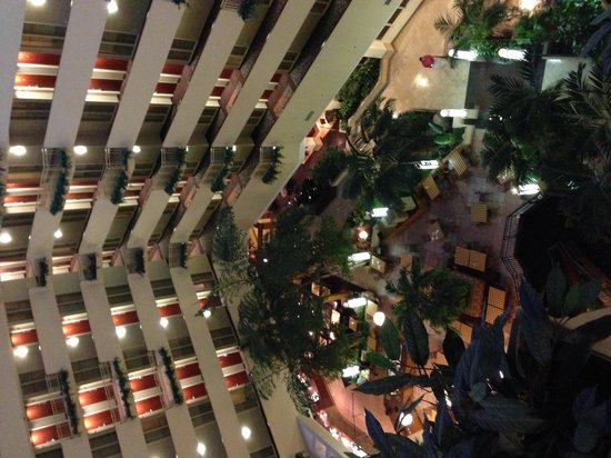 Embassy Suites by Hilton Tampa-USF/Near Busch Gardens: Increible vista