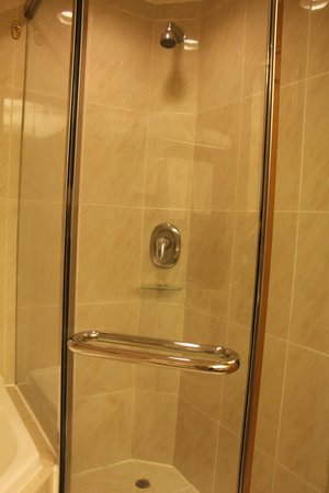 Regal Hongkong Hotel: shower