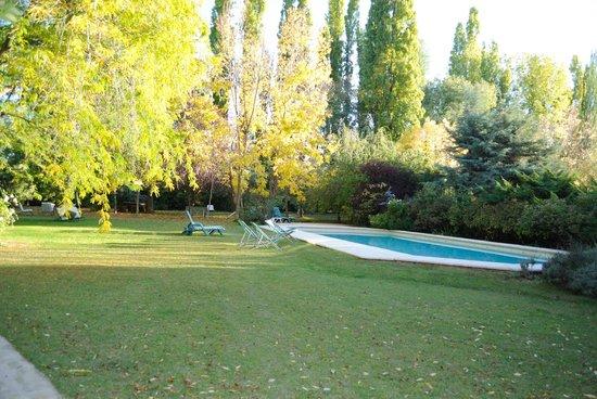 Casa Glebinias: Hermosa pileta
