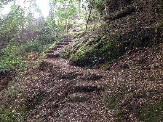 Abbazia di San Fruttuoso: El sendero con escaleras