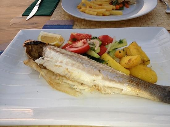Buzz Grill & Seafood: beautiful fish at buzz bar