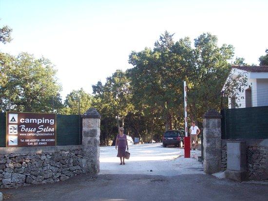 Villaggio Camping Bosco Selva: ingresso struttura