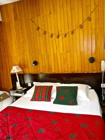 Hotel Les Bains : Une chambre cosy
