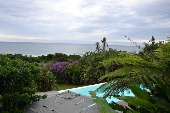 Days At Sea Beach Lodge: Man kann auch nur in Richtung Meer schauen - aber es gibt deutlich mehr...