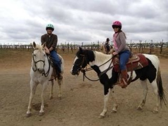 Wine Country Trails by Horseback: Before the ride