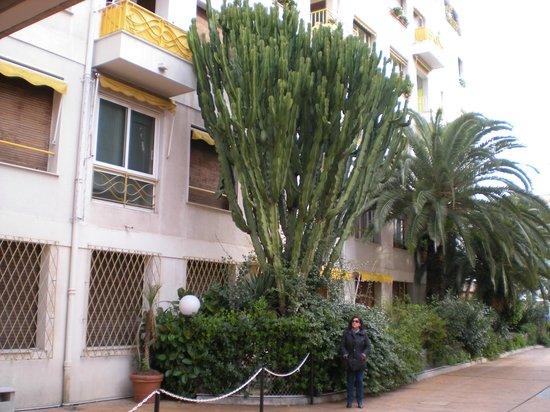 Massenet Hotel : Outside