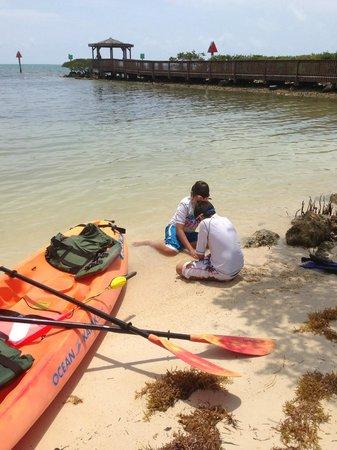 Ocean Pointe Suites at Key Largo: Beach