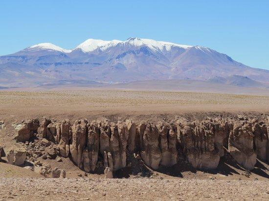 Salar de Tara: Vulcões sempre nas paisagens do Atacama