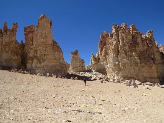 Salar de Tara: Tótens naturais gigantes (de 30 a 40m). Estou ali no meio, tente me achar!
