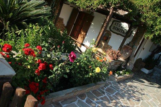 Dimitra Studios: κήπος