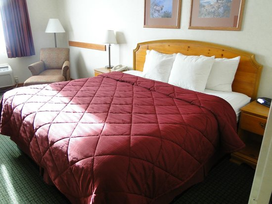 Comfort Inn and Suites Durango: Comfy bed