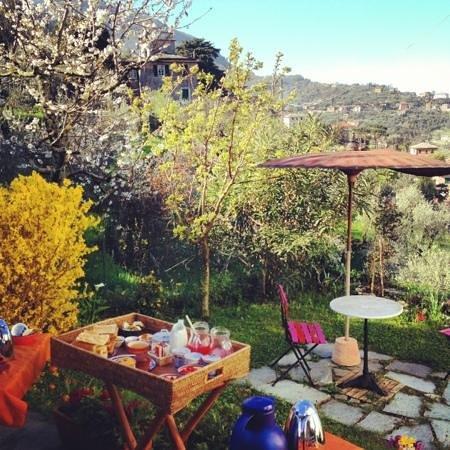 I Maggiolini: il giardino