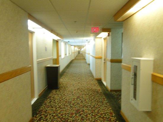 Comfort Inn and Suites Durango: Internal corridors