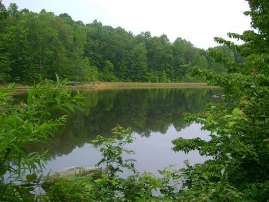 Trails End Family Camping: Fishing in Private Lake