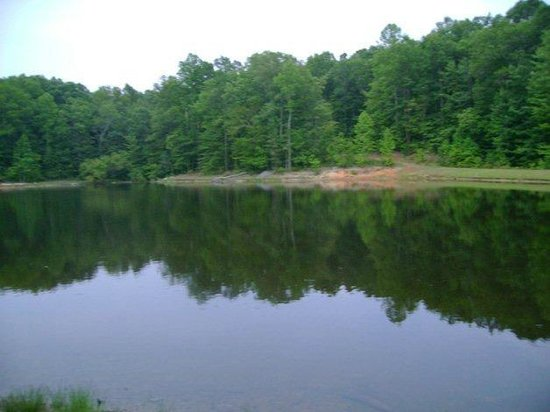 Trails End Family Camping: Tent sites around the lake