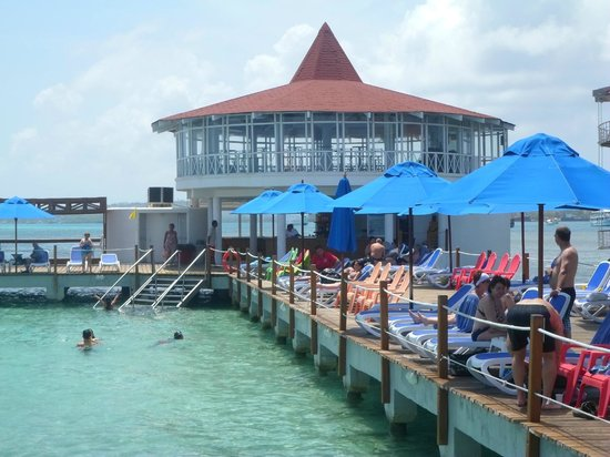 Decameron Aquarium: bar