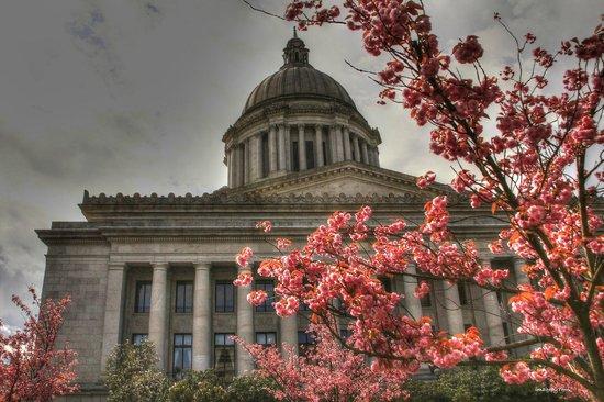 Washington State Capitol: The Legislature Building in Tacoma WA (April 14, 2013)