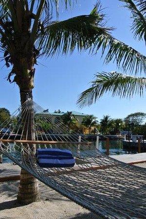 Creekside Inn Islamorada: Relaxin Area