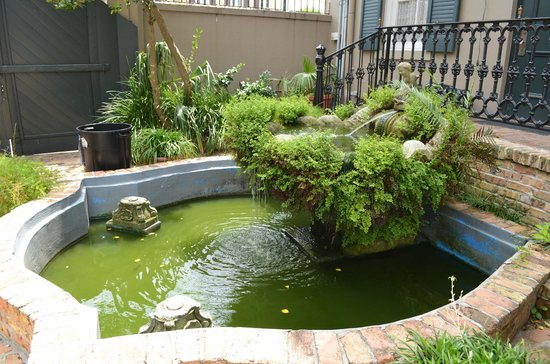 New Orleans Courtyard Hotel: Pond
