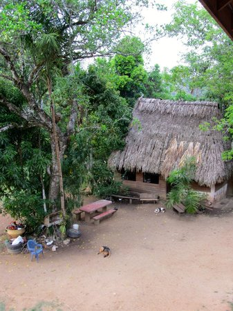 Martz Farm Treehouses and Cabanas Ltd.: Kitchen!