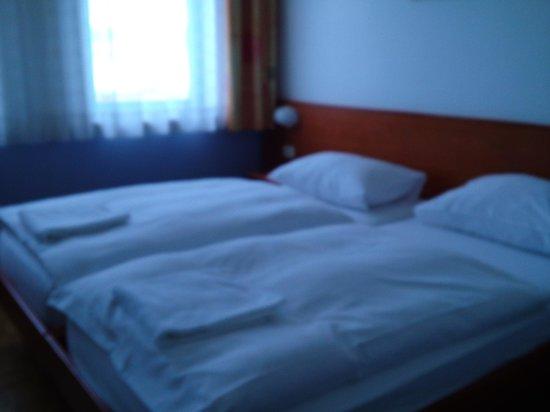 Vodisek Hotel: ツインをシングル利用しました。