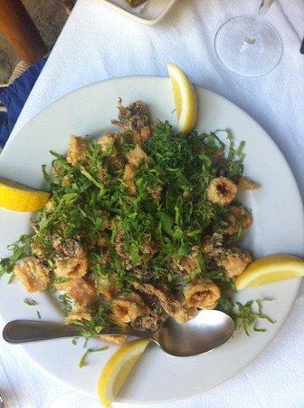 Cafe Santa Fe : Calamari... yum!