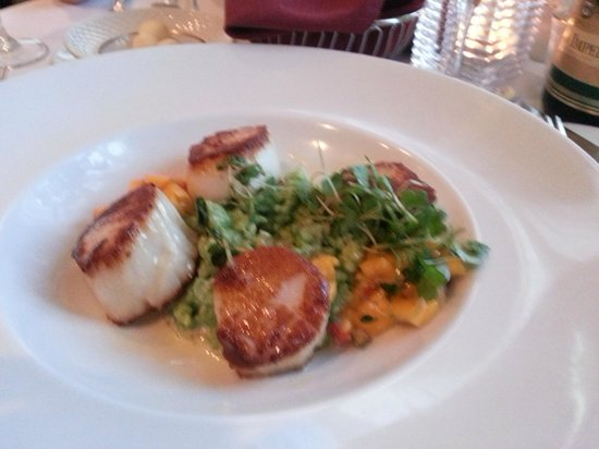 Dolce Hayes Mansion: Succulent Scallops.