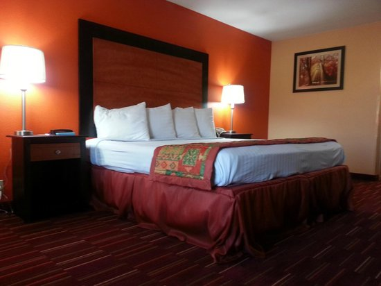 Quality Inn - Richland: Guest Room