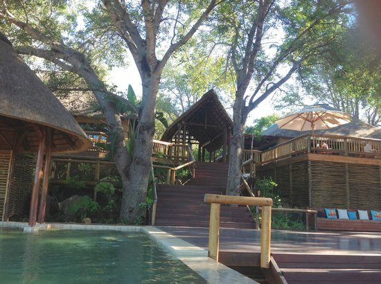 Naledi Bushcamp and Enkoveni Camp: A view up to the lodge