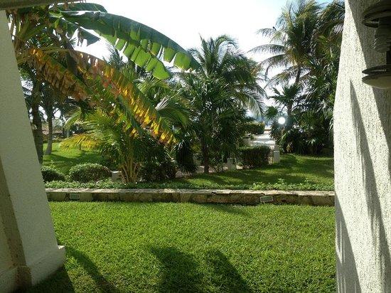 绍伊玛海滩度假村照片