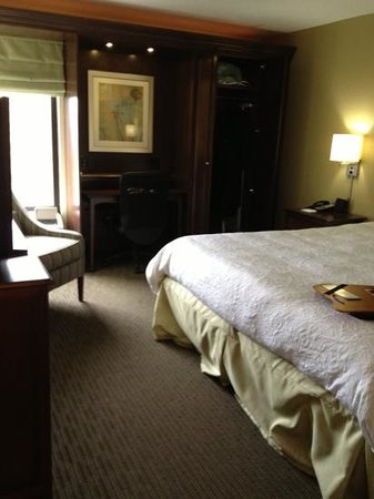 Hampton Inn Knoxville Airport: small room but well put together