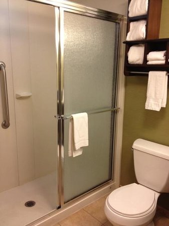 Hampton Inn Knoxville Airport: small shower but very comfortable