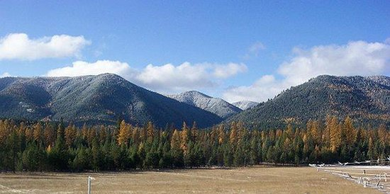 Cowboy Up Montana Roadhouse Dinner & Bed : Beautiful Fall foliage awaits during our Indian summers